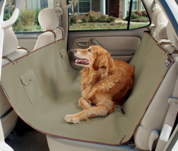 The ideal pet accessories for your car