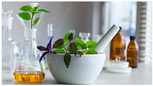 homeopathy-treatment